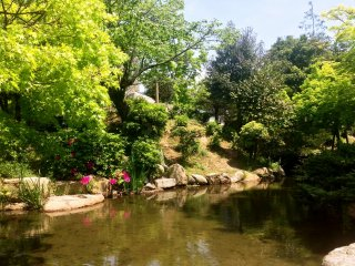 There are a number of Japanese ponds in this garden.