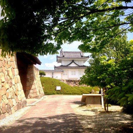 Maizuru Park & Tanabe Castle
