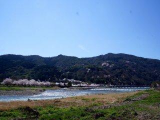 길을 헤매다 도착한 아라시야마! 사진엔 다 담지 못했지만 정말 가슴이 탁 트이는 풍경이였어요.