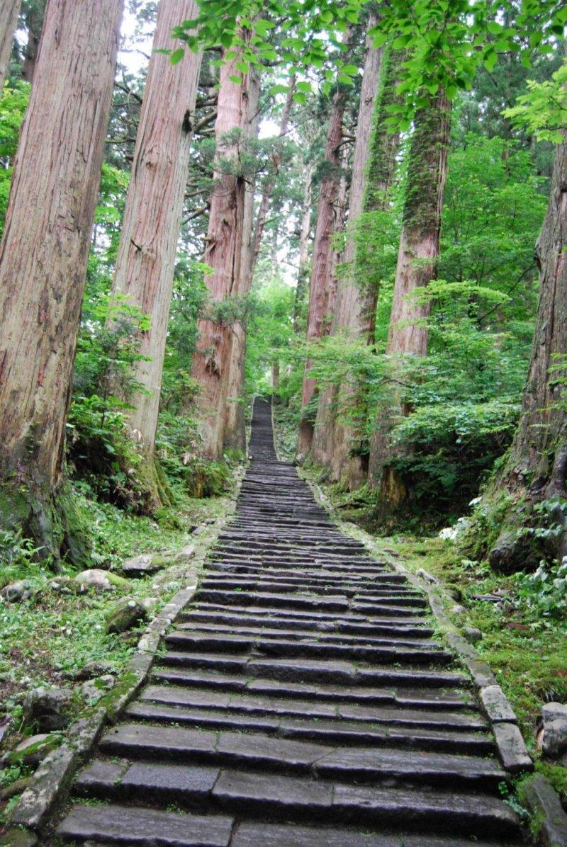 "Stone path and ""avenue of cedar trees"" (Sugi-Namiki) on Mount Haguro."