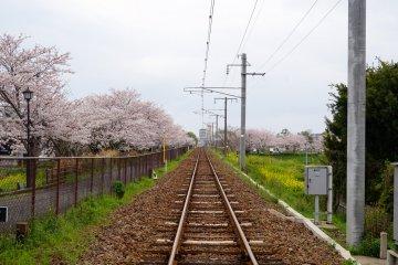 <p>...over the train tracks...</p>