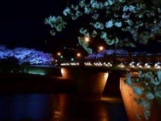 """Iluminação dos espessos pilares da """"Ponte Sakura"""""""