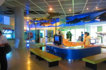 The discovery area has lots of hands-on exhibits for all ages