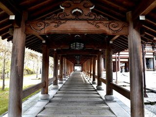 Long ascending roofed corridor leading to Daibutsu-den Hall (Big Buddha Hall)