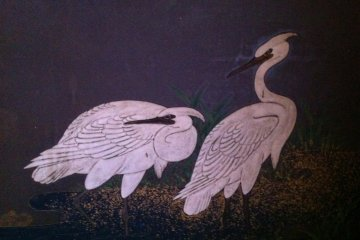 White herons in the Emperor's bath