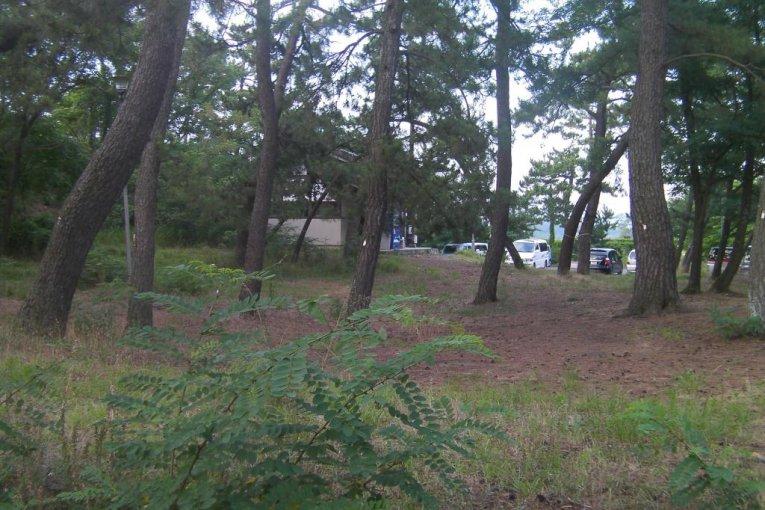 Палаточный лагерь Янагидзая