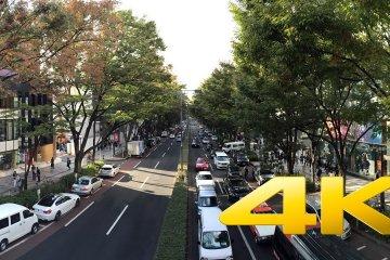 Đại lộ Omotesando