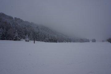 <p>มองไปทางไหนเจอแต่กระเช้าขึ้นไปสกี</p>