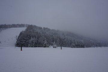 <p>เนินมันช่างน่าขึ้น ไม่ขึ้นก็ขอนอนกลิ้งหิมะสดมันตรงนี้แหละ</p>