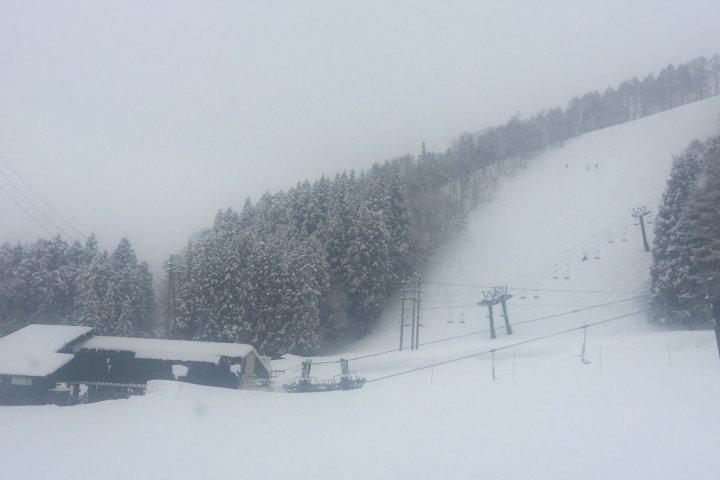 nozawa onsen เมืองที่ทำให้อยากสกี