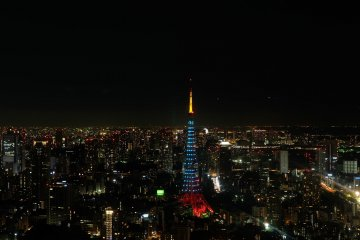 <p>Tokyo city view from 52nd floor</p>