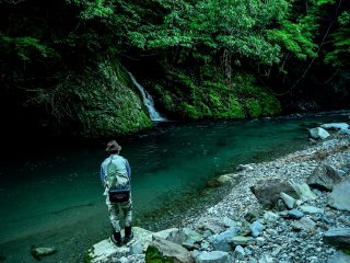 مشهد الصيد