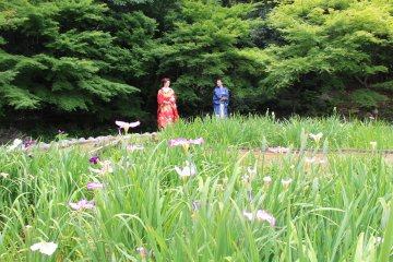 <p>A couple that chose the wonderful garden as a setting for their pictures</p>