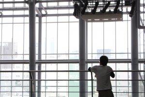 L'espace, très lumineux, est éclairé grâce à un toit en partie en verre, ainsi qu'une façade faisant entièrement office de verrière