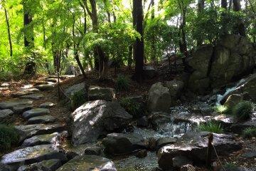<p>Hidden Waterfalls</p>