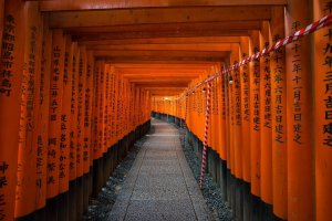 Fushimi Inari in the evening