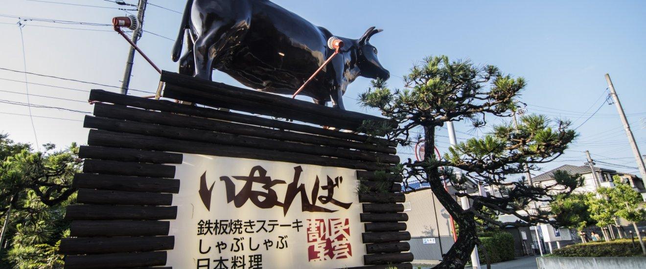 이나바 간판 위에 있는 소의 모습. 소고기를 대하는 이나바의 태도는 매우 진지합니다.