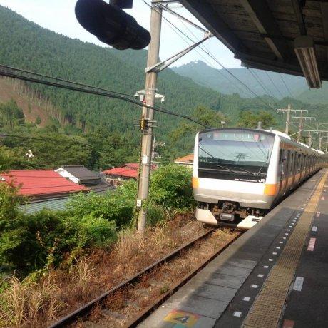 The Mountain Grass Trail Tokyo-to
