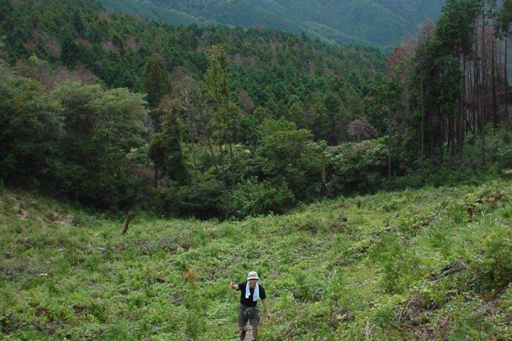 Paths Less Traveled – Ryūō-zan