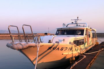 The Art Liner fast ferry at Ieura Port in Teshima. The first ferry departs at 7 for a 35 minute trip to Takamatsu