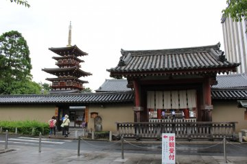 <p>Just outside the gate of Yakushiji Temple. The west pagoda is visible on the left &nbsp;</p>