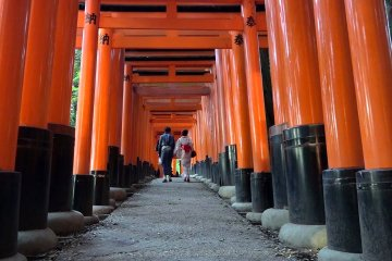 Fushimi Inari Shrine, Day and Night