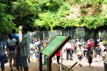 <p>It may be busy, but the waterfall is still visible and beautiful &nbsp;</p>