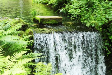 <p>The water pours from here down the mountain</p>