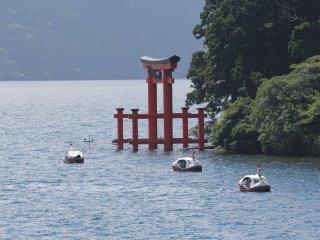 Hakone Shrine yang berada di sepanjang pesisir Lake Ashi