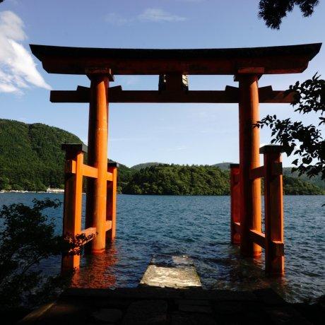 Mengunjungi Hakone Jinja Shrine