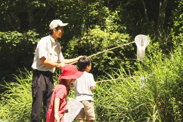 <p>Our guide helps the children catch a dragonfly!</p>