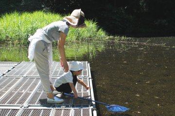 <p>Even the little ones can get involved</p>