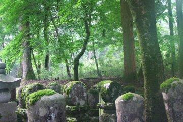 日光 輪王寺墓所