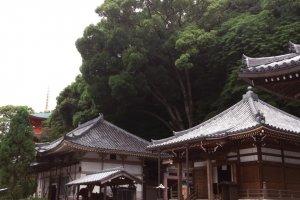 Храм Сума-дэра