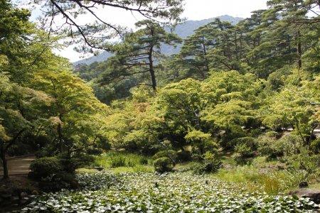 Công viên Yahiko