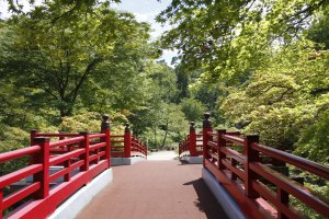 The bright red bridge is a popular place to view the cherry blossoms in April.
