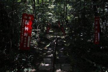 <p>The quiet, dark path towards the shrine.</p>