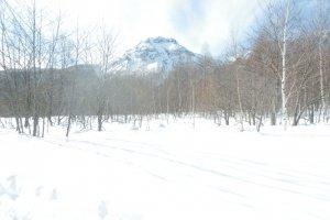 A silent trek