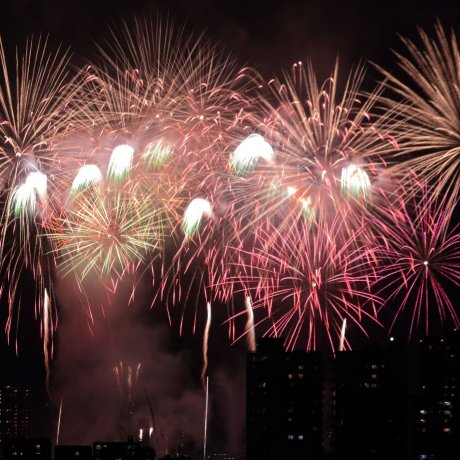 Edogawa Fireworks Festival [Đã hủy]