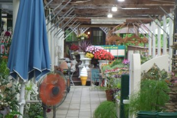 <p>Follow the ice-cream through to the right-hand side of the garden center</p>
