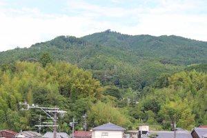 Pagoda 3 lantai Okadera dari dek observasi Kantor Desa Asuka.