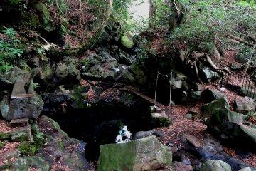 <p>Obinmizu Pool has pure drinking quality water</p>