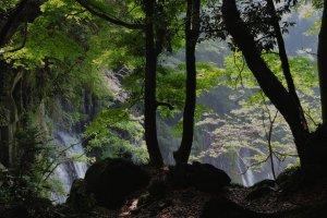 First glimpse of Shiraito Falls
