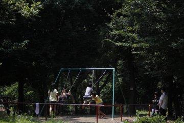<p>Children have fun on the swings.&nbsp;</p>