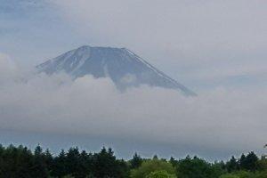 Fujisan yang muncul dengan berselimut kabut.