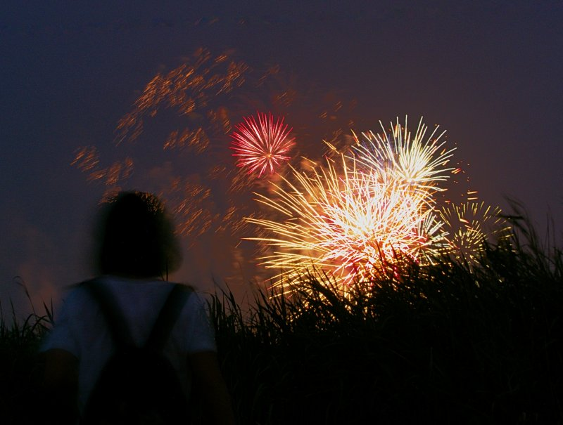 <p>Girl watching fireworks</p>