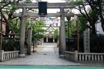 A peaceful avenue of trees leading to the main shrine.