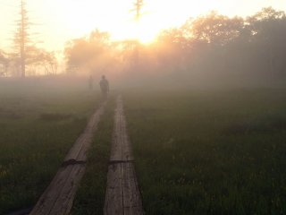 A hiker walks along a wooden path in Oze, which makes it easier to hike the marshes.
