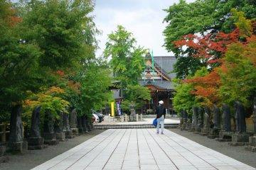 <p>When you entering the&nbsp;Saishoin Temple</p>