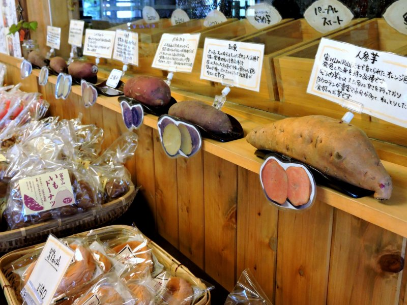 <p>Different kinds of sweet potatoes</p>